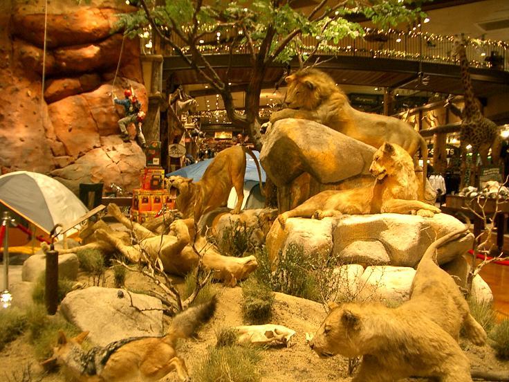 Las Vegas Attractions Free Fun